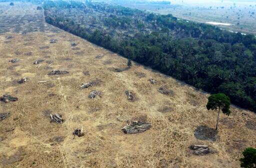 Vista aérea de uma área desmatada e queimada da Amazônia, em Rondônia. 24/08/2019