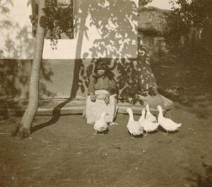 """""""Tisza Szalka"""" (1924)"""