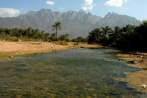 The Yemeni island of Socotra has been spared involvement in the country's conflict, which has claimed nearly 10,000 lives since March 2015