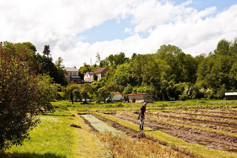Ферма Villa Paul и ее традиционный пейзаж