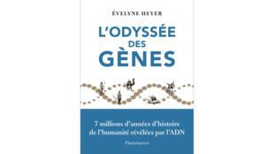 L'Odyssée des gènes, par Evelyne Heyer, aux éditions Flammarion.