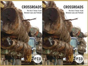 Trang bìa báo cáo ngày 28/07/2011của Cơ quan Điều tra Môi trường về việc buôn lậu gỗ từ Lào qua Việt Nam.