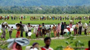 (Ảnh minh họa) - Những người Rohingya Miến Điện vượt biên giới sang Bangladesh để tới các trại tị nạn ở Palang Khali, ngày 19/10/1017.