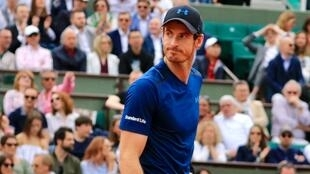 Andy Murray has dropped from world number one to 830 in the ATP rankings following his hip injury.