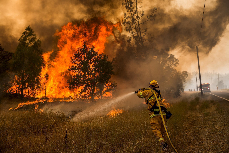 Os bombeiros tentam lutar contra os incêndios.