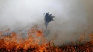 Foto de un incendio en la Amazonía, 24 de agosto de 2019.