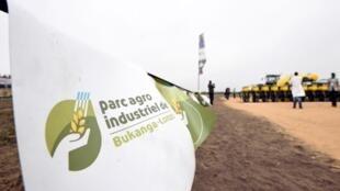 Le parc agro-industriel de Bukanga-Lonzo, dans l'Ouest congolais, avait été lancé en grande pompe en 2014.