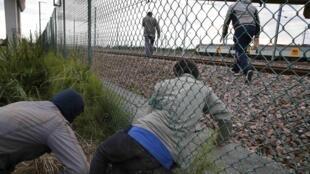 Des migrants tentent d'accéder au tunnel sous la Manche, près de Calais, le 29 juillet 2015.