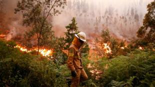 Cerca de 48 horas depois do início do incêndio, que fez 63 mortos e 135 feridos na região de Leiria, no centro de Portugal, os bombeiros continuam a combater os fogos que lavram a zona
