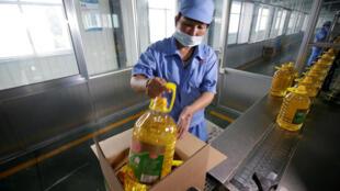 Với đậu tương nhập từ Mỹ, nhà máy Lương Hữu, Khúc Phụ, tỉnh Sơn Đông, Trung Quốc, tinh chế dầu thực phẩm. (Ảnh chụp ngày 04/07/2018)