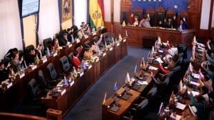 Les Sénateurs approuvent la loi électorale, le 23 novembre 2019 à La Paz.