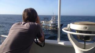 Un militant de Greenpeace observe un bateau qu'une équipe de l'organisation écologiste s'apprête à inspecter.