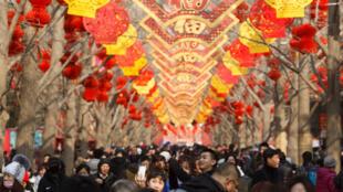 圖為中國北京地壇公園民眾熙攘慶豬年春節2019年2月5日