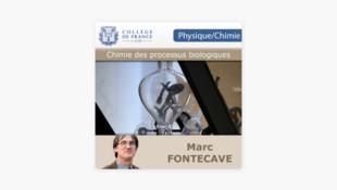Chaire chimie des processus biologiques du Collège de France.