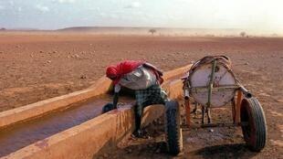 Kenya. Collecte d'eau.