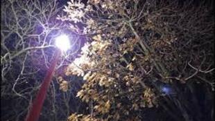 人工照明也会造成污染