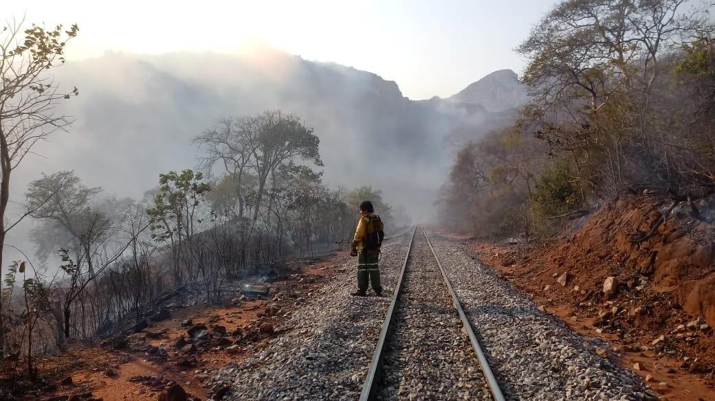 Área atingida pelos incêndios florestais que destruíram hectares de floresta em Robore, Bolívia, 19 de agosto de 2019.