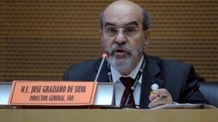 José Graziano da Silva, diretor-geral da FAO.