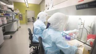 Pesquisadores trabalham no desenvolvimento de uma vacina contra o novo coronavírus.