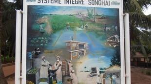 Une infographie du programme du centre Songhaï: produire, transformer et vendre.