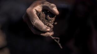 Les mines de Cobalt en RDC font l'objet d'une exploitation mondiale.