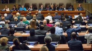 2015年9月25日聯大特別會議通過可持續發展目標