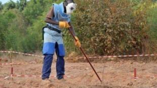 Un démineur de l'ONG Handicap international au travail dans la région de Zinguinchor en mai 2011. Des centaines de personnes ont été victimes de mines en Casamance depuis le début du conflit en 1982.