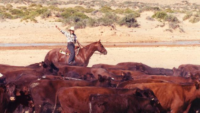 S. Kidman & Co là trang trại tư nhân lớn nhất nước Úc