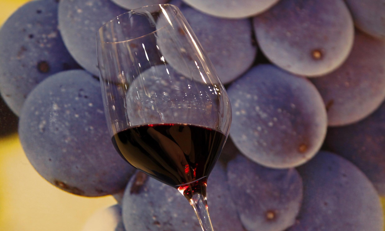 Мускат и  красное вино