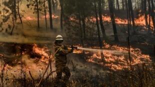 Un pompier tente d'éteindre un incendie de forêt dans le village de Casais de Sao Bento à Macao, dans le centre du Portugal, le 22 juillet 2019.