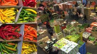 Piments / Le Pavillon des fruits et légumes de Rungis.