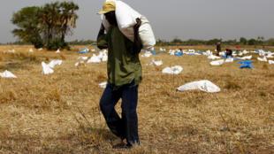 FAO quer direito à alimentação nas constituições da CPLP