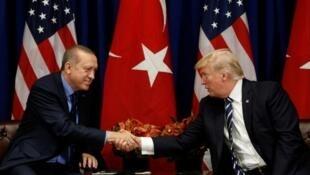 土耳其总统埃尔多安访问美国,会晤美国总统特朗普     2017年5月