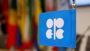 Le logo de l'OPEP dans les bureaux de l'organisation à Vienne, en décembre 2018.