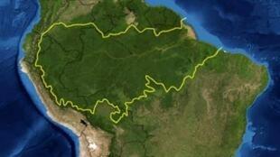 La forêt tropicale amazonienne.