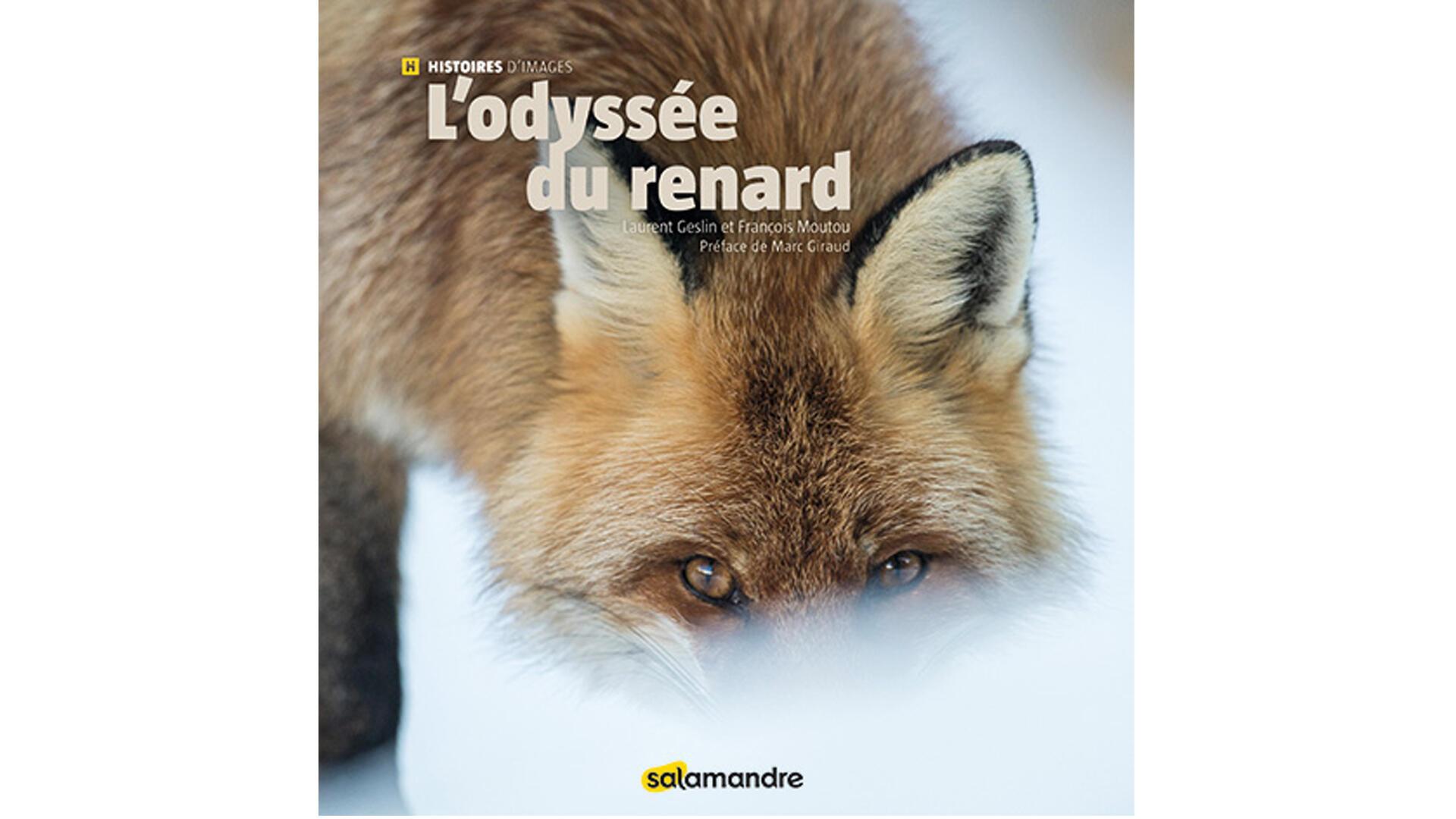 «L'Odyssée du renard».