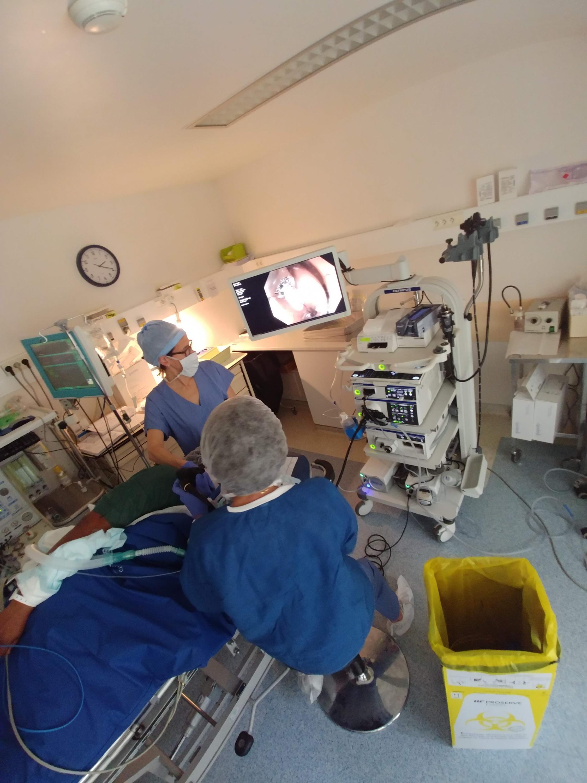 A médica francesa Vianna Costil observa o estômago da paciente no monitor