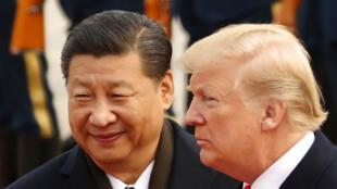 Tổng thống Mỹ, Donald Trump và chủ tịch Trung Quốc Tập Cận Bình trong Đại Lễ Đường ở Bắc Kinh, ngày 09/11/2017.