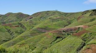 Montagnes pelées. Plus un seul arbre sur les collines du district de Miarinarivo. La culture et le charbonnage ont eu raison des dernières petites forêts du coin.