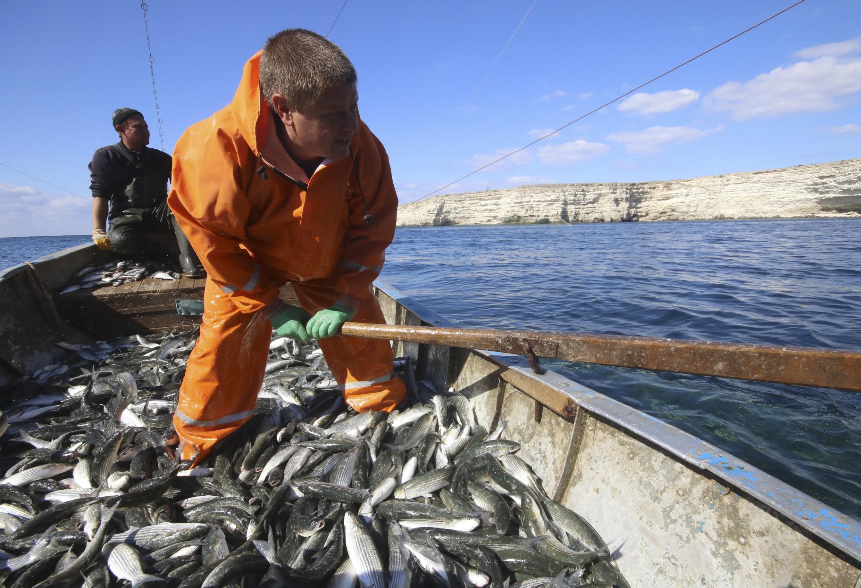 Một ngư dân đánh cá trong vùng biển bán đảo Crimee, ngày 03/10/2017.