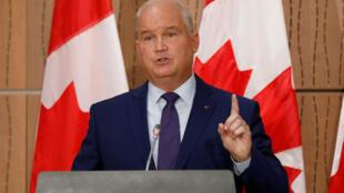 加拿大保守党新任党魁的艾林·奥图尔资料图片