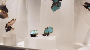 Bijoux en turquoise de l'Arménie créés par l'artiste Thierry Vendôme. Ils sont exposés dans son atelier, dans le IVème arrondissement de Paris.