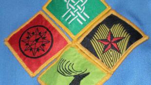 Badges progressifs des scouts irlandais.