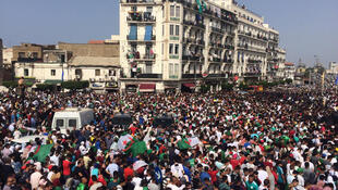 Algerian fans waiting in the capital to welcome home the victorious national football team, 20 July 2019.
