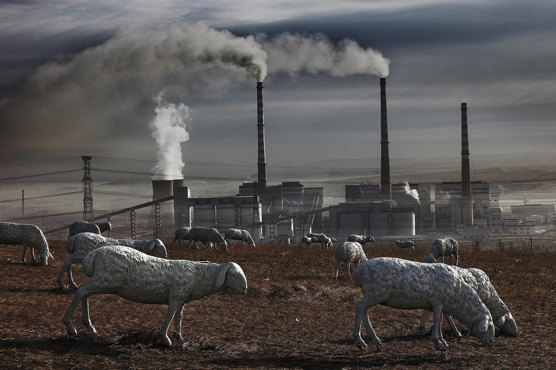 Indústrias poluentes, homens e animais compartilham convivem na Mongólia Interior.