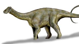 Représentation d'un Nigersaurus Taqueti.