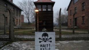 """A lei sobre Holocausto, adotada pelo senado polonês nesta quinta-feira (2), prevê multas e penas de prisão para quem utilizar a expressão """"campos da morte poloneses""""."""