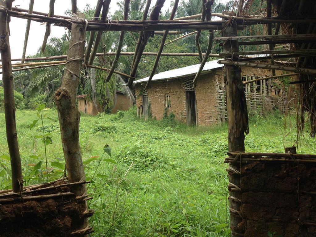 Depuis le début des massacres en octobre 2014 dans le territoire de Beni, des dizaines de maisons ont été abandonnées sur la route nationale 4 en Oicha et Eringeti.