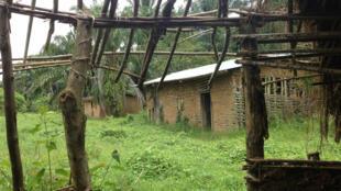 Moja ya makazi ya raia wa kawaida waliokimbia mauaji katika mji wa Eringeti pia Oicha wilayani Beni mashariki mwa DRC oktoba 2014.