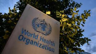 Representante europeu da OMS alerta para alta de casos da Covid-19 em outubro e novembro no continente